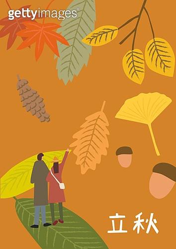 사람, 풍경 (컨셉), 계절, 절기, 가을, 입추, 낙엽