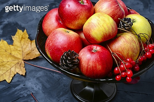 Vase with autumn apples. Autumn fruit of the Apple tree in vase on background with maple leaves