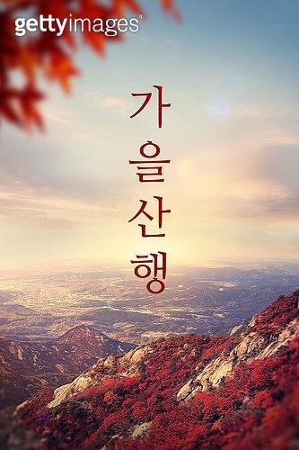 모바일백그라운드, 문자메시지 (전화걸기), 산, 가을