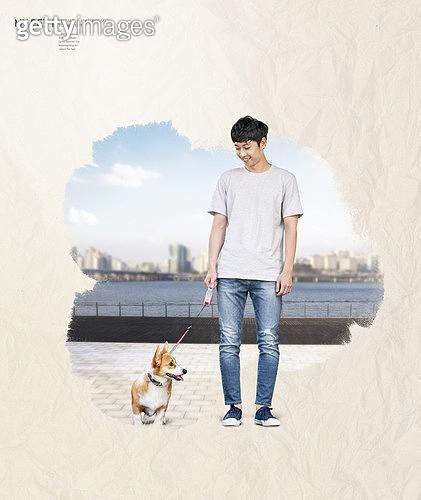 그래픽이미지, 편집디자인, 포스터, 반려동물, 개 (개과), 붓터치, 재질 (물체묘사), 반려동물 (길든동물), 가족, 웰시코기 (순종개)