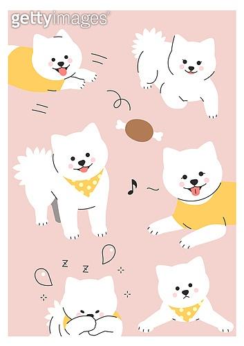 반려동물, 패턴, 캐릭터, 강아지, 애완견 (개), 포메라니안 (순종개)