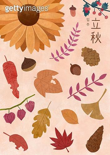 절기, 절기 (계절), 계절, 입추, 가을, 잎 (식물부분), 낙엽