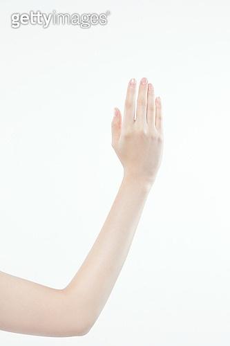 한국인, 동양인 (인종), 성인여자, 사람손, 사람팔, 행동, 손짓, 뷰티, 누끼 (누끼), 부분, 아름다움, 의료성형뷰티, 한명, 손가락, 사람, 실내, 스튜디오촬영, 몸