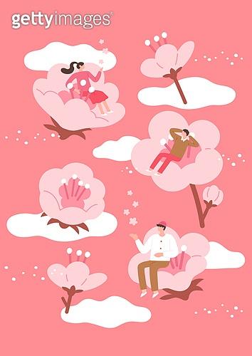 봄, 벚꽃, 벚나무 (과수), 소풍 (아웃도어), 소풍, 꽃, 꽃송이, 구름