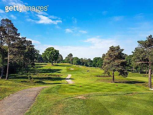 골프, 골프장, Golf, 풀 (식물), 잔디밭 (경작지)