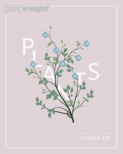 일러스트, 벡터 (일러스트), 패턴, 꽃, 봄, 야생화