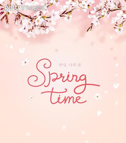 그래픽이미지, 이벤트페이지, 봄, 캘리그래피 (문자), 꽃, 팝업, 벚꽃