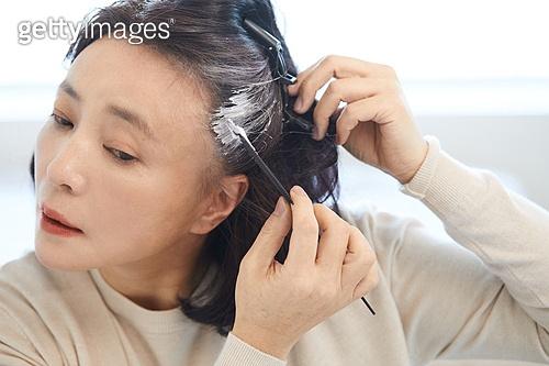 중년여자 (성인여자), 흰머리 (머리카락색), 머리염색하기 (헤어케어), 바르기