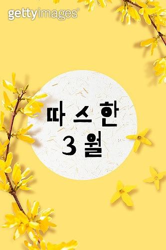 모바일백그라운드, 문자메시지 (전화걸기), 봄, 3월, 개나리