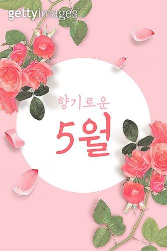 모바일백그라운드, 문자메시지 (전화걸기), 봄, 5월, 장미