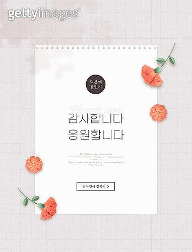 감사, 가정의달, 5월, 메시지 (정보매체), 파이팅, 카네이션 (패랭이꽃), 편지