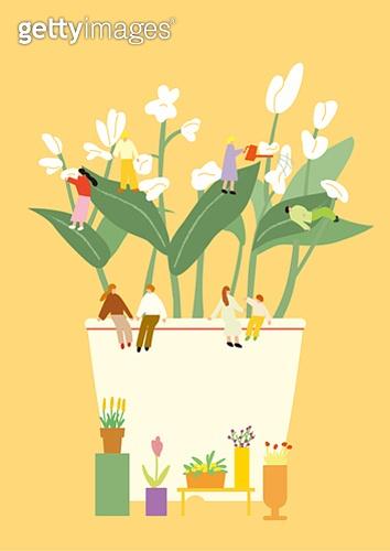 화분, 식물, 반려식물, 원예 (레저활동), 봄