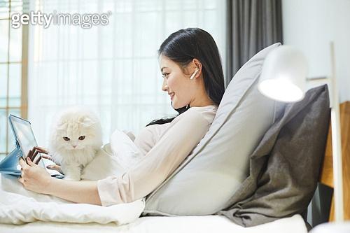 사회적거리두기 (사회이슈), 집콕 (컨셉), 라이프스타일, 휴식 (정지활동), 디지털태블릿 (개인용컴퓨터), 화상통화 (인터넷전화), 스마트기기 (정보장비), 고양이 (고양잇과), 반려동물 (길든동물)