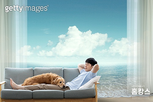 여름, 휴가 (주제), 홈캉스, 휴식, 집, 애완견 (개)