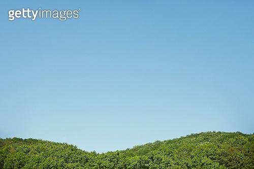 맑은하늘 (하늘), 백그라운드 (주제), 자연풍경 (교외전경)