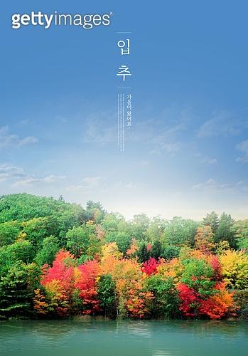 가을, 입추, 풍경 (컨셉), 계절, 감성, 추억, 자연풍경, 맑은하늘 (하늘), 단풍철