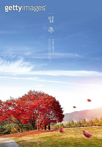 가을, 풍경 (컨셉), 계절, 감성, 추억, 자연풍경, 맑은하늘 (하늘), 단풍나무, 단풍철