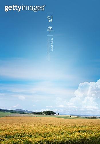 가을, 풍경 (컨셉), 계절, 감성, 추억, 자연풍경, 맑은하늘 (하늘), 벼, 시골풍경 (교외전경)