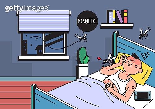 여름, 모기, 해충, 스트레스, 밤 (시간대)