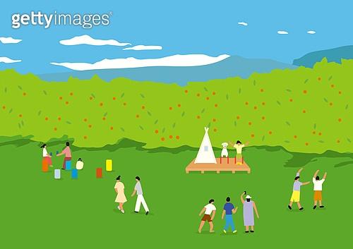 풍경 (컨셉), 자연 (주제), 제주도 (대한민국), 휴애리자연생활공원, 풀 (식물)