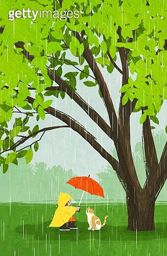 여름, 숲, 풍경 (컨셉), 나무, 풀 (식물), 비 (물형태), 장마, 우산 (액세서리), 우비 (방수복)