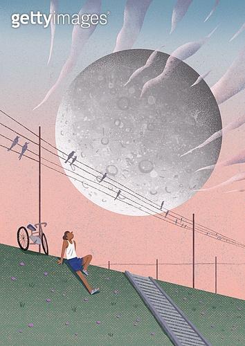 여름, 밤 (시간대), 풍경 (컨셉), 보름달 (달), 비현실 (기묘함), 자전거