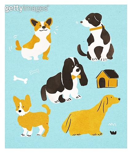 동물, 캐릭터, 강아지, 웰시코기 (순종개)