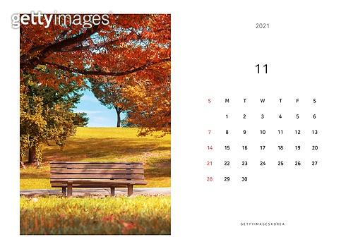 달력, 달력템플릿 (이미지), 새해 (홀리데이), 연하장 (축하카드), 다이어리, 2021, 2021년, 목업, 목업 (이미지), 템플릿 (이미지), 가을, 단풍나무 (낙엽수), 단풍길, 여가 (주제)