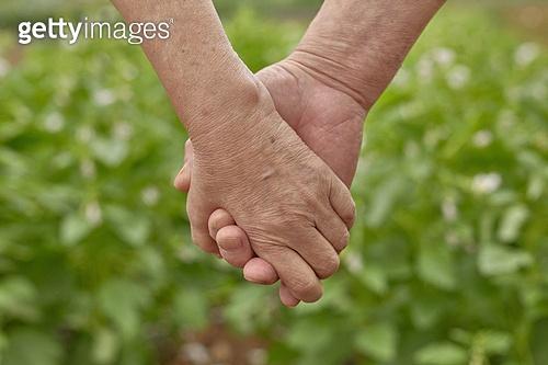 노인 (성인), 사람손 (주요신체부분), 손잡기 (홀딩), 행복, 믿음 (컨셉)