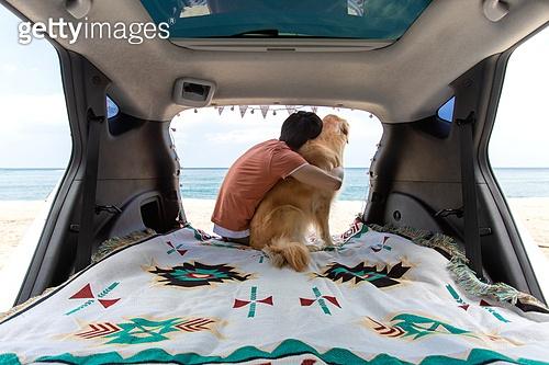 남성, 차박캠핑 (캠핑), 캠핑, 휴가, 혼자여행 (여행), 리트리버, 골든리트리버, 반려동물 (길든동물), 자동차트렁크 (교통수단일부), 앉기 (몸의 자세), 어깨동무