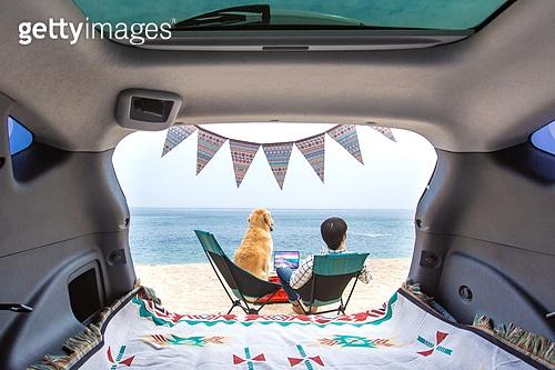 남성, 차박캠핑 (캠핑), 캠핑, 휴가, 혼자여행 (여행), 리트리버, 골든리트리버, 반려동물 (길든동물), 뒷모습, 캠핑의자, 앉기 (몸의 자세)