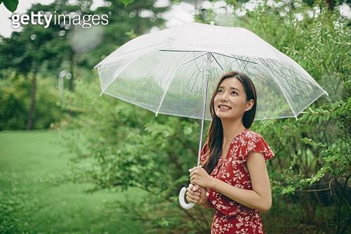 감성, 휴식, 날씨, 비 (물형태), 장마 (계절), 기쁨 (컨셉), 행복