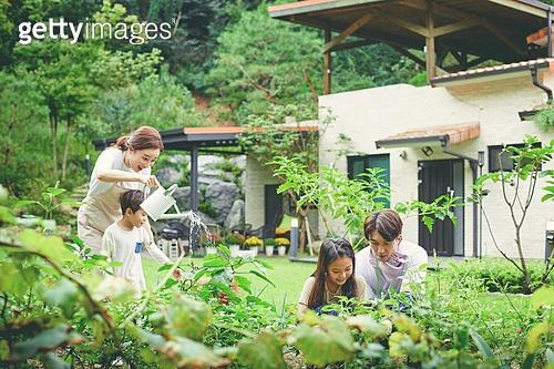가족, 전원생활 (컨셉), 경작 (식물속성), 텃밭작물 (경작), 홈메이드, 미소, 대화, 주말농장