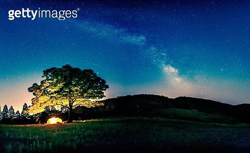 캠핑,별,밤,야경,풍경,전경,실외,나무,숲,언덕,하늘,파랑,은하수,밤하늘,비지리,경주시,경북,한국,국내여행,