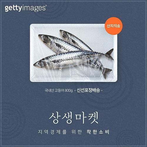 그래픽이미지, 배너 (템플릿), 팝업, 캠페인, 일회용 (상태), 생선