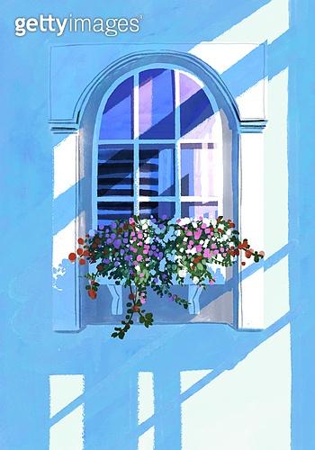 봄, 창문, 프레임, 빛 (자연현상), 꽃, 풍경 (컨셉), 꽃밭 (경작지)