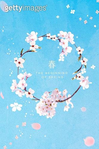봄, 꽃, 프레임, 벚꽃
