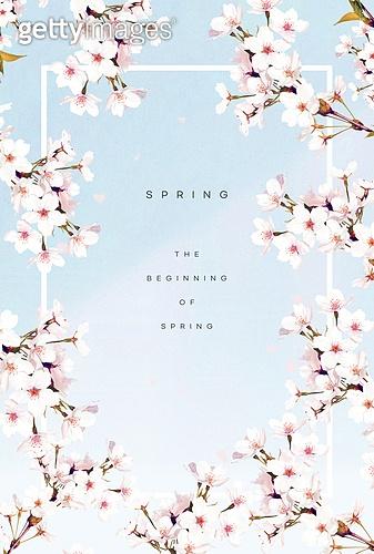 봄, 꽃, 프레임, 벚꽃, 꽃잎