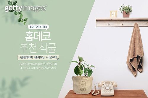 식목일, 집콕 (컨셉), 플랜테리어, 식물, 원예 (레저활동), 인테리어, 반려식물, 화분