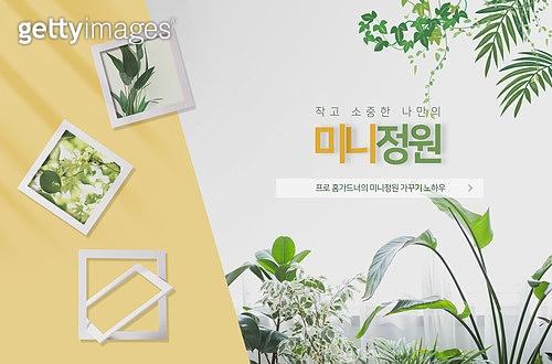 식목일, 집콕 (컨셉), 플랜테리어, 식물, 원예 (레저활동), 인테리어, 반려식물, 액자 (예술도구)