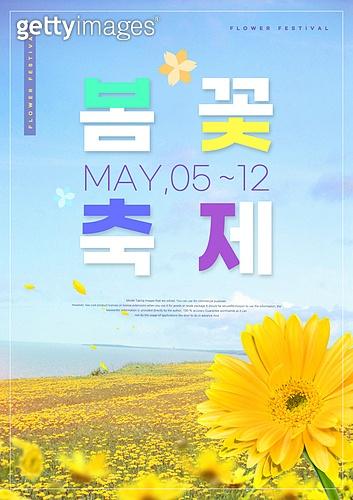 꽃, 축제 (엔터테인먼트), 포스터, 계절, 노랑코스모스 (코스모스), 풍경 (컨셉)