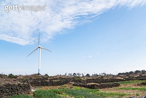 바람, 발전소, 전기 (연료와전력발전), 풍력 (대체에너지), 풍력터빈 (터빈), 환경보호 (환경), 대체에너지 (연료와전력발전), 환경, 탄소배출권 (주제), 탄소중립 (환경보호)