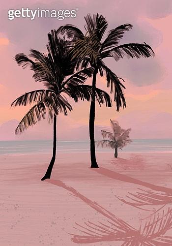 풍경 (컨셉), 여름, 계절, 바다, 휴양지, 해변 (해안), 일몰 (땅거미), 모래 (자연현상), 야자나무 (열대나무)