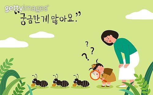 어린이 (나이), 아기 (나이), 부모, 교육 (주제), 육아, 엄마, 개미, 관찰, 호기심