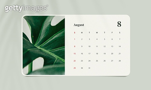 그래픽이미지, 목업 (이미지), 여름, 달력