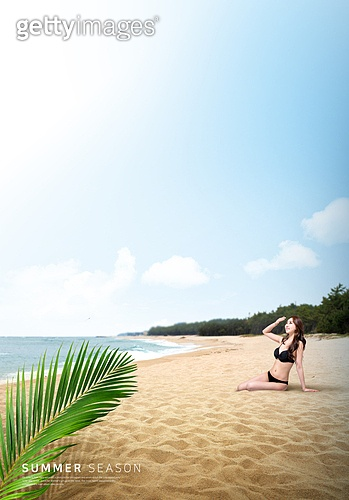 바다, 해변, 풍경 (컨셉), 시원함 (컨셉), 카피스페이스 (콤퍼지션), 여름, 야자잎