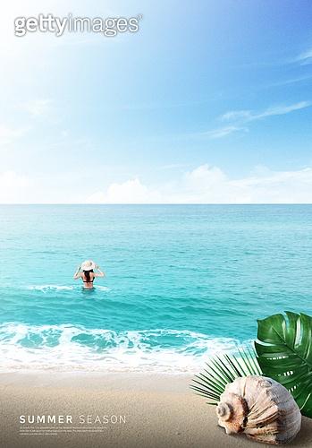 바다, 해변, 풍경 (컨셉), 시원함 (컨셉), 카피스페이스 (콤퍼지션), 여름, 여성 (성별), 소라고둥 (개각), 야자잎