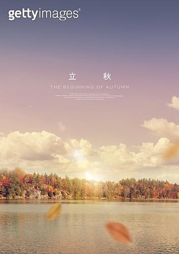 입추, 가을, 계절, 풍경 (컨셉), 감성, 백그라운드, 단풍나무 (낙엽수), 낙엽, 강변 (지세)