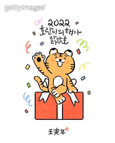 캐릭터, 호랑이 (고양잇과큰동물), 호랑이띠해 (십이지신), 새해 (홀리데이), 연하장 (축하카드), 캘리그래피 (문자), 손글씨, 2022년, 선물 (인조물건), 꽃가루