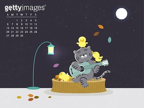 달력 (시간도구), 호랑이 (고양잇과큰동물), 호랑이띠해 (십이지신), 2022년, 11월, 흑호 (호랑이)